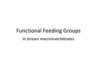 Functional Feeding Groups