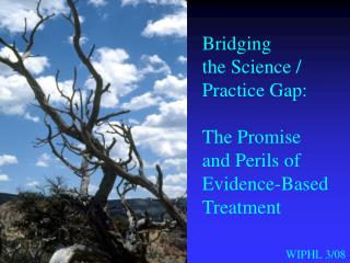 Bridging the Science / Practice Gap: The Promise and Perils of  Evidence-Based  Treatment