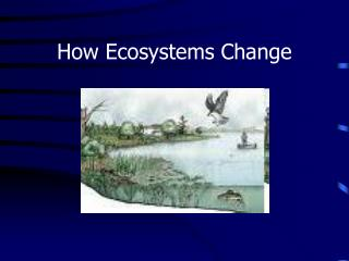 How Ecosystems Change