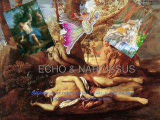 ECHO & NARCISSUS