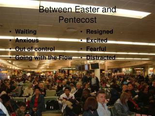 Between Easter and  Pentecost