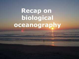 Recap on  biological oceanography