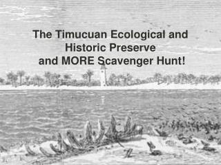 The Timucuan Ecological and  Historic Preserve  and MORE Scavenger Hunt!