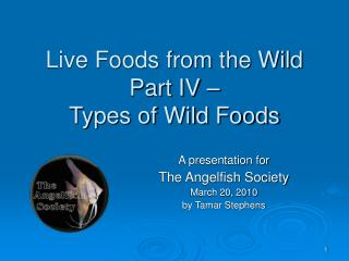 Live Foods from the Wild Part IV –  Types of Wild Foods