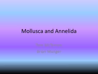Mollusca and Annelida