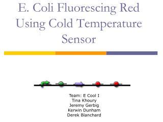 E. Coli Fluorescing Red Using Cold Temperature Sensor