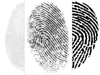 History of Fingerprinting in Japan