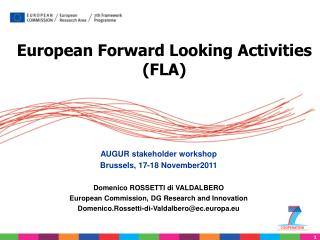 European Forward Looking Activities (FLA)