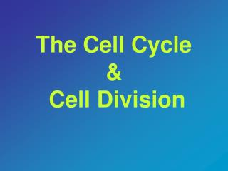 The Cell Cycle  &  Cell Division