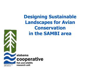 Designing Sustainable Landscapes for Avian Conservation  in the SAMBI area