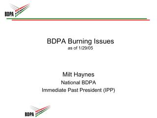 BDPA Burning Issues as of 1/29/05