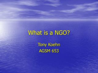 What is a NGO?