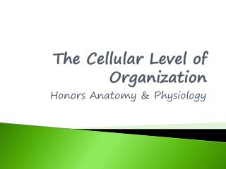 The Cellular Level of Organization