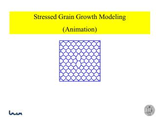 Stressed Grain Growth Modeling (Animation)