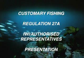 CUSTOMARY FISHING REGULATION 27A IWI/AUTHORISED REPRESENTATIVES PRESENTATION