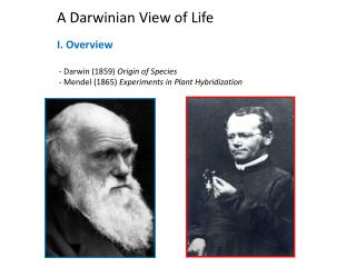 A Darwinian View of Life I. Overview  - Darwin (1859)  Origin of Species
