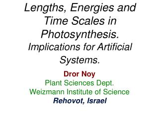 Lengths, Energies and Time Scales in Photosynthesis. Implications for Artificial Systems.