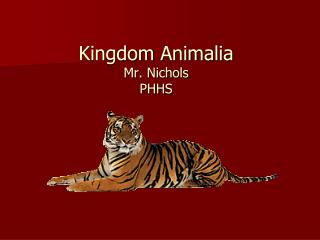 Kingdom  Animalia Mr. Nichols PHHS