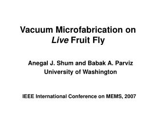 Vacuum Microfabrication on  Live  Fruit Fly