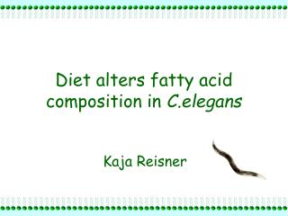 Diet alters fatty acid composition in  C.elegans