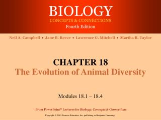 CHAPTER 18 The Evolution of Animal Diversity