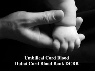 Umbilical Cord Blood Dubai Cord Blood Bank DCBB
