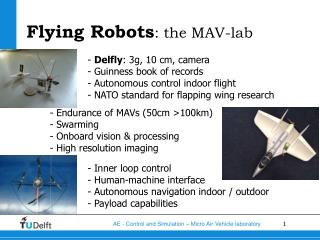 Flying Robots : the MAV-lab
