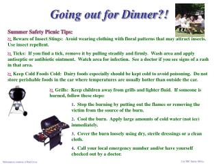 Summer Safety Picnic Tips: