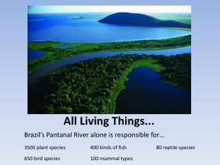 All Living Things...