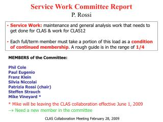 Service Work Committee Report P. Rossi