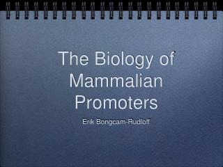 The Biology of Mammalian Promoters