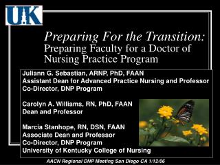 Preparing For the Transition: Preparing Faculty for a Doctor of Nursing Practice Program