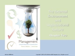 The External Environment and Organizational Culture