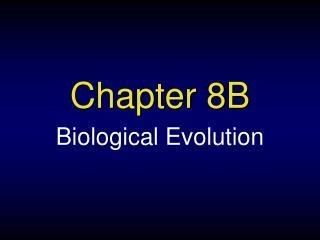 Chapter 8B