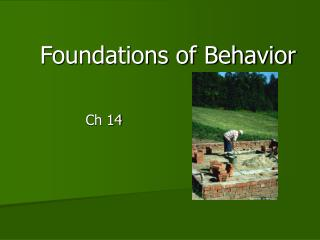 Foundations of Behavior