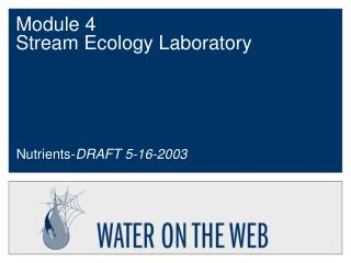 Module 4  Stream Ecology Laboratory