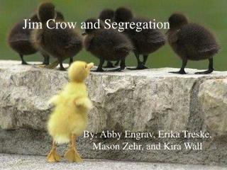Jim Crow and Segregation