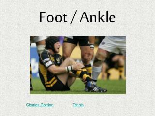 Foot / Ankle