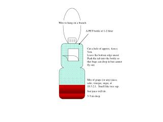 A PET bottle of 1-2 litter