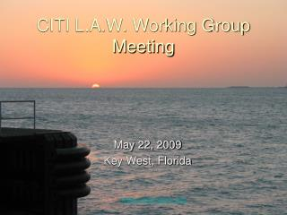 CITI L.A.W. Working Group Meeting