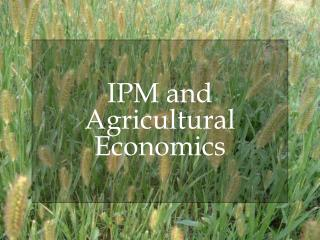 IPM and Agricultural Economics