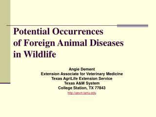 Potential Occurrences  of Foreign Animal Diseases  in Wildlife