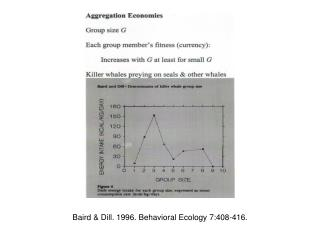 Baird & Dill. 1996. Behavioral Ecology 7:408-416.