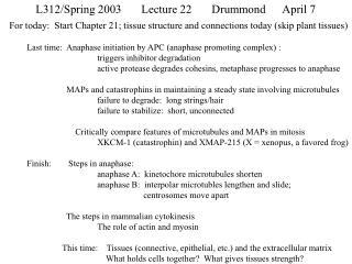 L312/Spring 2003Lecture 22Drummond April 7