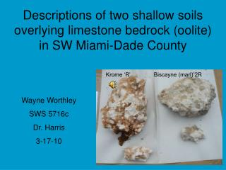 Descriptions of two shallow soils overlying limestone bedrock (oolite) in SW Miami-Dade County