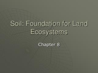 Soil: Foundation for Land Ecosystems