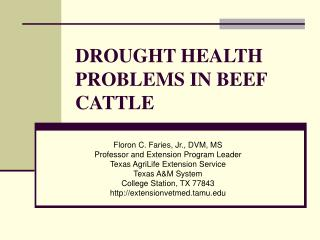 DROUGHT HEALTH PROBLEMS IN BEEF CATTLE