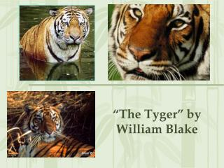 """The Tyger"" by William Blake"