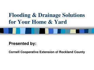Flooding & Drainage Solutions for Your Home & Yard