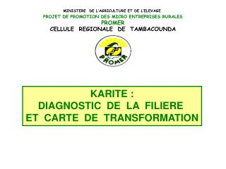 KARITE : DIAGNOSTIC  DE  LA  FILIERE  ET  CARTE  DE  TRANSFORMATION